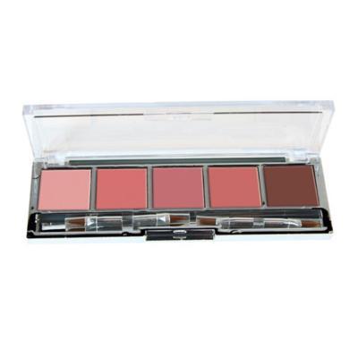 Palette 5 Rouges à lèvres - Beige